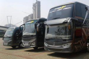 Sewa Bus Blora Murah | Siap Melayani di Area Cepu & Sekitarnya